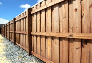 10. Pinelap fencing