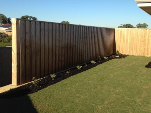 6.Boundary pinelap fence